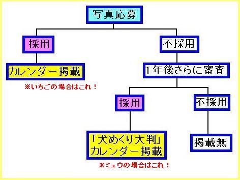 100_20090916101257.jpg