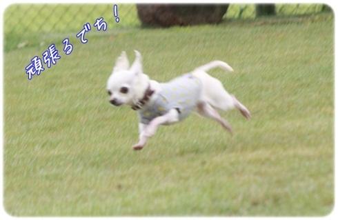037_20110720204543.jpg