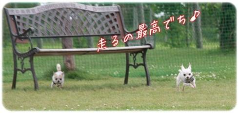 095_20110720205051.jpg
