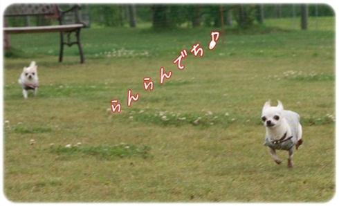 099_20110720205939.jpg