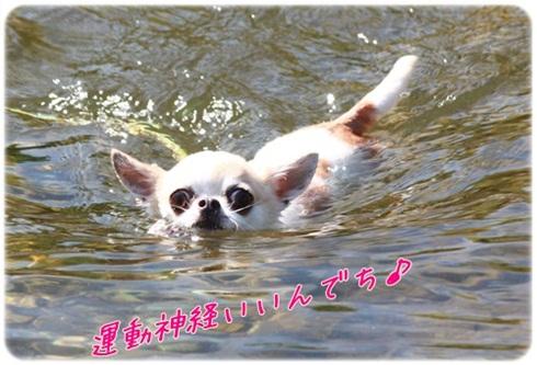 303_20110822194646.jpg