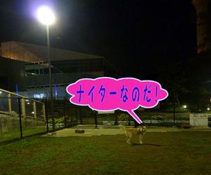 PICT465.jpg