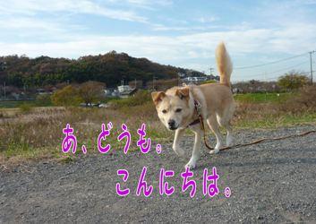 PICT593.jpg