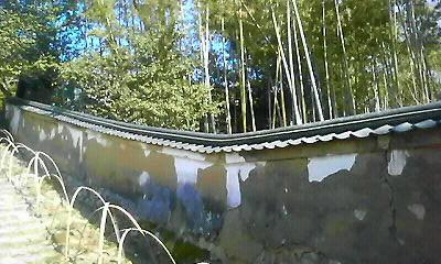 20100415195210