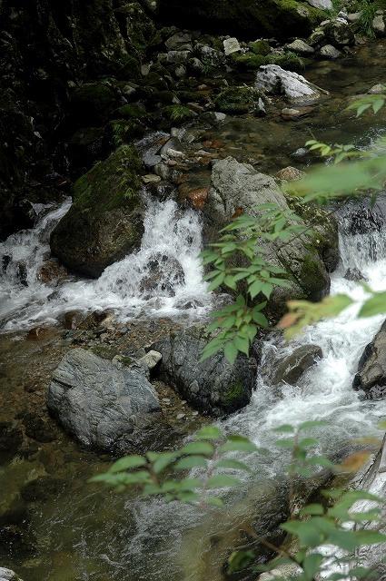 谷川の風景3