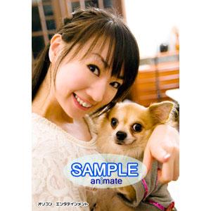 nanasuta_ani.jpg