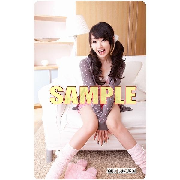 shinai_tora.jpg