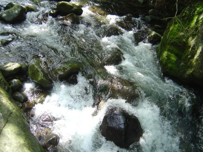 渓流10縮小