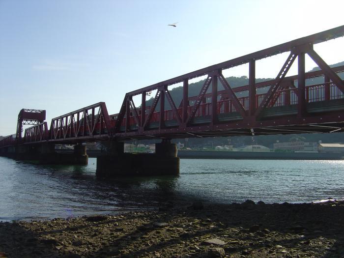 長浜大橋とトンボ縮小
