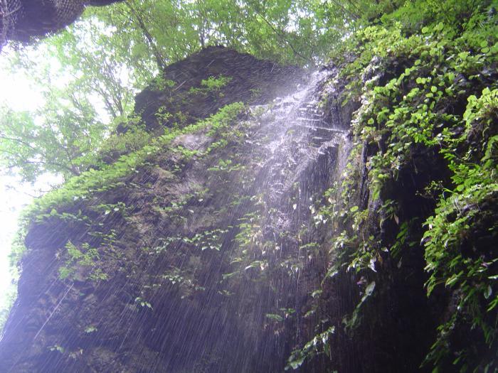 滝11縮小