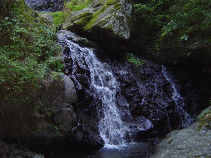 白猪の滝1縮小