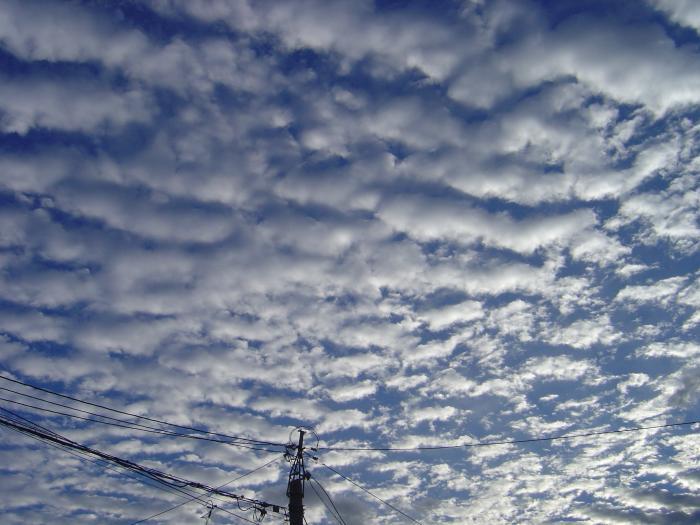 秋の雲3縮小