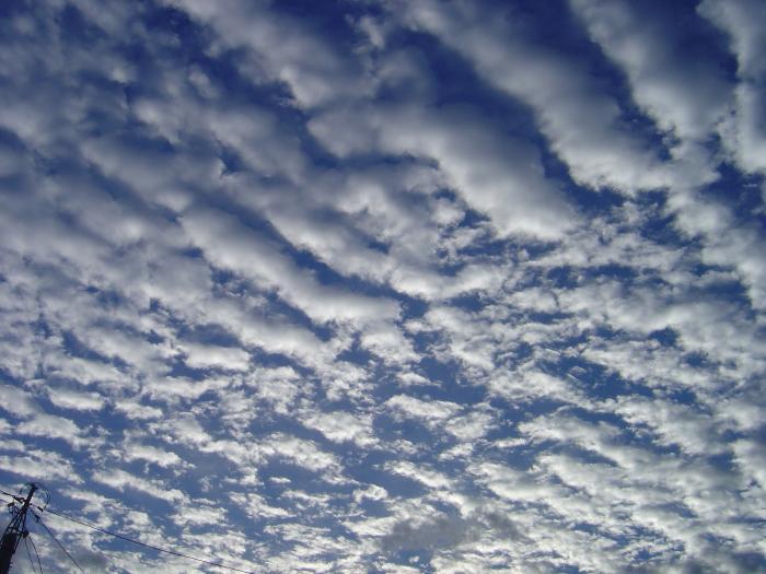 秋の雲1縮小