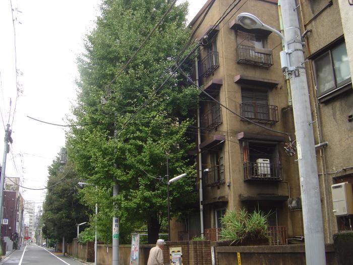上野アパート9縮小