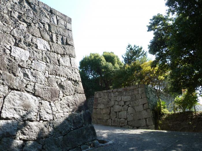 石垣5縮小