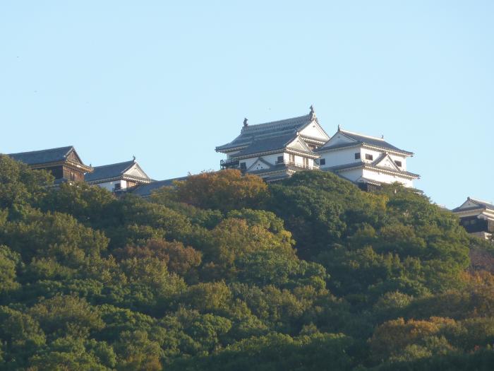 西から松山城10縮小