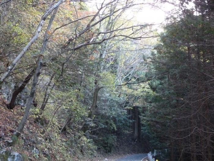 林道2縮小