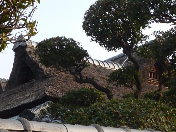 豊島家屋根3縮小