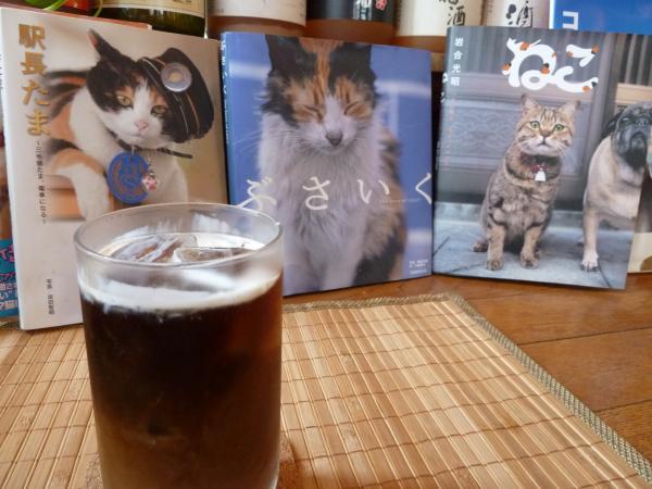 猫アルバム3