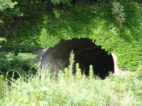 トンネル入口2
