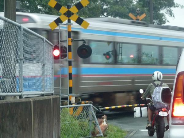 踏み切り列車6