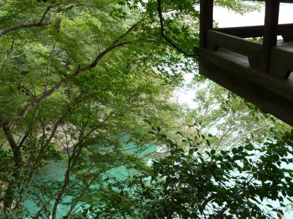 不老庵廊下から肱川7