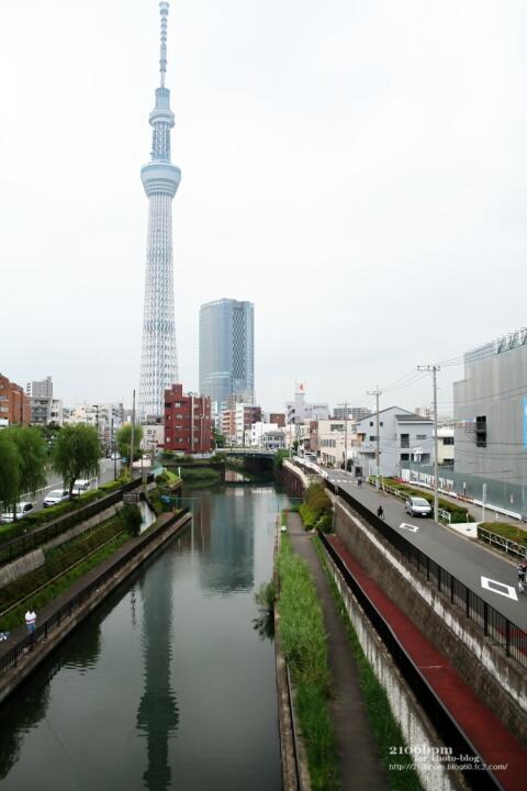 歩道橋から東京スカイツリー / 東京都墨田区