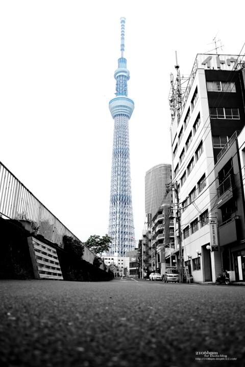東京スカイツリー / 東京都墨田区