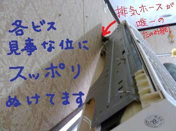 P1000433_convert_20110509184906.jpg