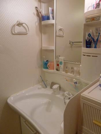 P1000941_convert_20110527064633.jpg