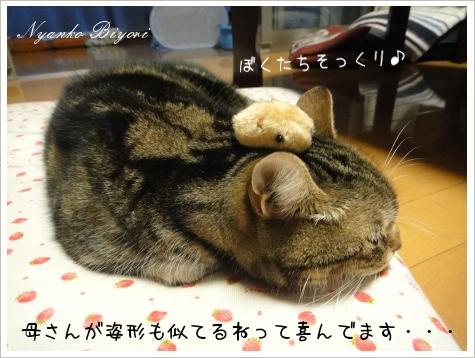 カピバラさんとぼく4