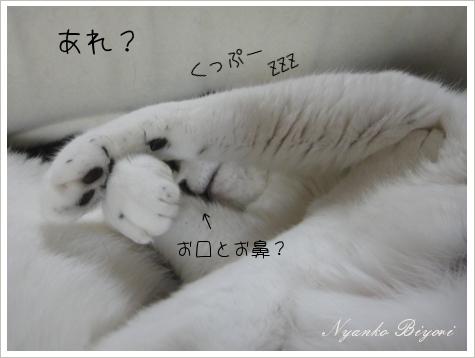 どうなってんの?2
