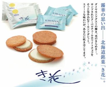 kibana_001.jpg