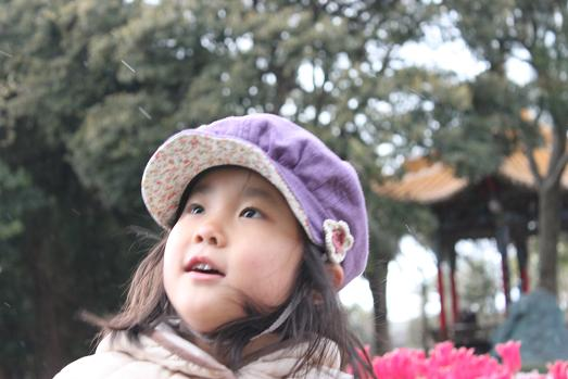 IMG_7141blog.jpg