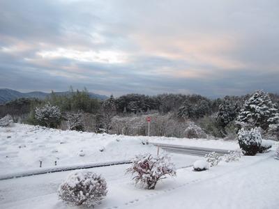 IMG_3022雪景色