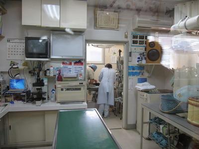 IMG_3328手術室