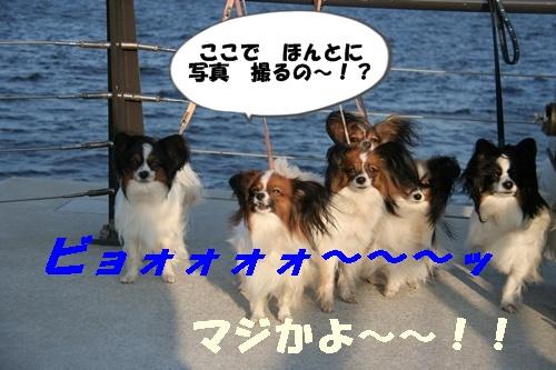 20090926_7327.jpg