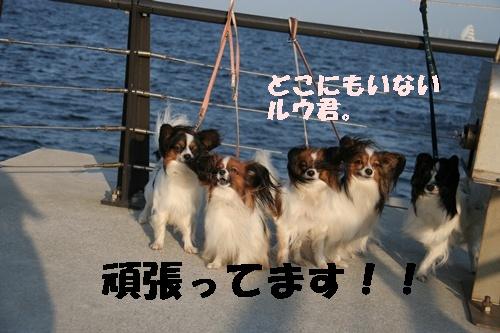 20090926_7331.jpg