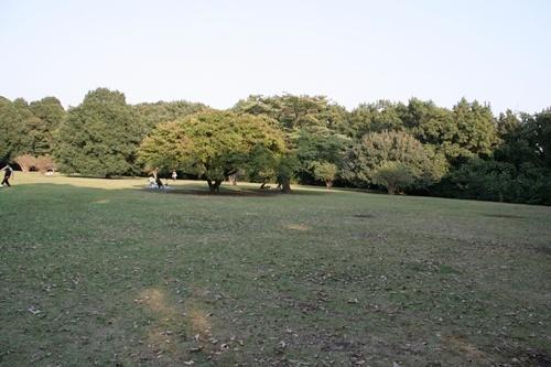 20091015_7851.jpg