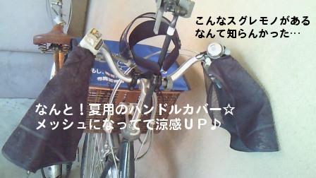 201006101249002.jpg