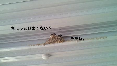 3_20100602210512.jpg