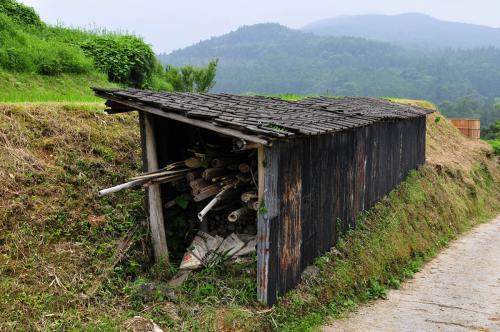 20110703yoshinobu2942.jpg