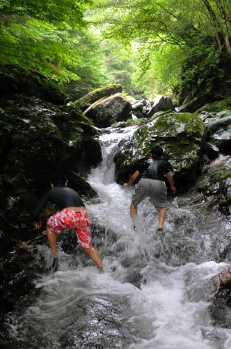 20110816mibuchi6343.jpg