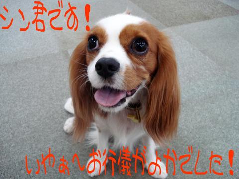 (|||ノ`□´)ノオオオォォォー!!