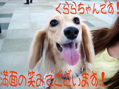 ( *´艸`)クスクス