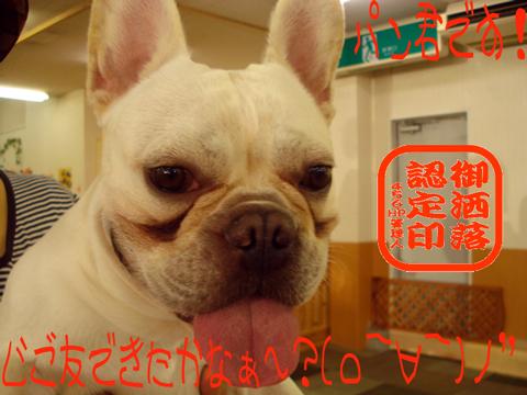 (・ロ・)ホ('ロ')ホ--ッッ!!!