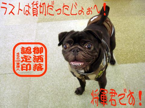 ホップ!ステップ!ジャンプ!⌒v⌒v⌒v⌒ミ(ノ´∀`)ノ♪