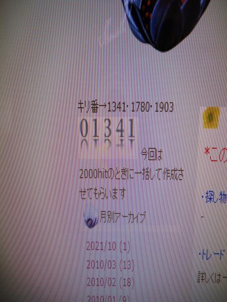 DSC00011_convert_20100328181103.jpg