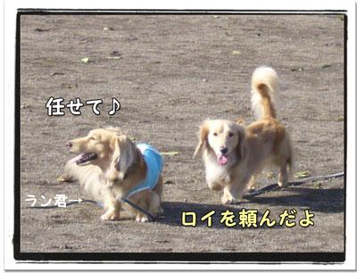 2009082804.jpg