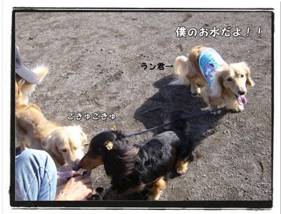 2009082805.jpg